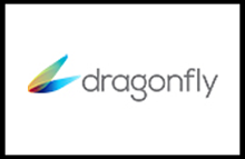 Dragonfly motorized projection screens